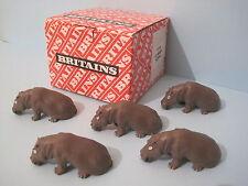 Britains plastica animali da zoo * Hippo baby (versione successiva) commercio confezione da 12
