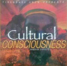 1 x 12'' Cultural Consciousness (FIREHOUSE / VP)