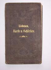 Liebenow General Landkarte Schlesien Bergwerk & Hüttenwesen um 1890 !