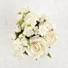 Prima Flowers Northpark beautiful box of 20 pcs White 590451