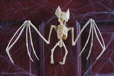 "11"" Bat Skeleton Black Widow Spooky Scary Halloween Haunted House Decor Prop"