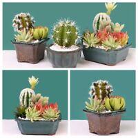 DIY Garden Miniature Succulents Fake Plant Artificial Cactus Floral Decor-