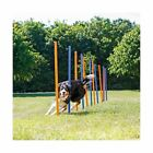 TRIXIE Agility Slalom Weave Poles for Dogs, with 12 Poles Included, Blue/Oran...