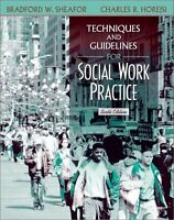 Techniques and Guidelines for Social Work Practice (6th Edition) by Bradford W.