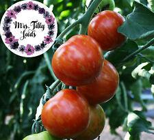 Tomate TIGERELLA Tomatensamen 10 Samen bunte einfache leckere Tigertomate würzig