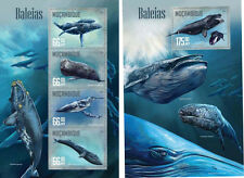 Mozambique Whales Marine Fauna MNH stamps set 2 sheets