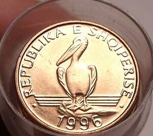 Gem Unc Roll (50 Coins) Albania 1996 One Lek~Brown Pelican coins