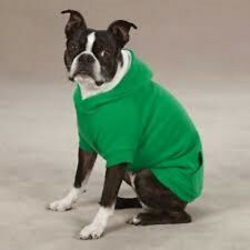 Zack & Zoey Green Fleeced Lined Hoodie Large
