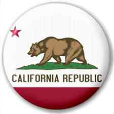 Small 25mm Lapel Pin Button Badge Novelty California Flag