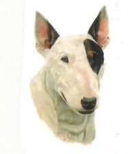 BULL TERRIER DOG Head on Twelve Identical 6 inch Fabric Squares to Quilt and Sew