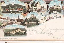 17003 Litho AK Schüttenhofen Südböhmen SUSICE na Sumave 1899