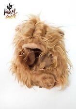 Cute Pet Cat Wig Lion Hat Head Emulation Lion Costume Mane Cat Wig Hair