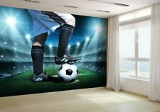 Soccer Concept Wallpaper Mural Photo 34673094 premium paper