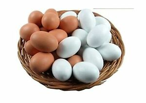 SallyFashion Wooden Fake Eggs Easter Decorating Very Realistic 9 Pcs 2 Colors