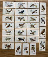 26 RARE ORIGINAL LAMBERT & BUTLER BIRDS & EGGS CIGARETTE CARDS 1906!