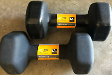 Champion 12 lb Neoprene Hand Weight Set of 2 Brand New 24 lbs Total Black