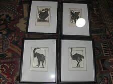 Four Alan James Robinson engraving etching Griffin Dodo bird Ram Ostrich