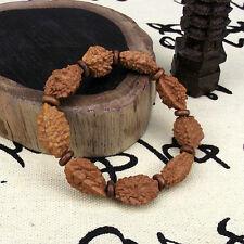 Longevity Two-petal Rudraksha seeds Tibet Buddhism Amulet Bracelet