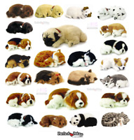 Perfect Petzzz - The Original Breathing Huggable Pet - Puppies & Kittens