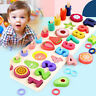 Wooden Puzzle for Toddlers Numbers and Fruit Puzzle Educational Toys Kid Sydney