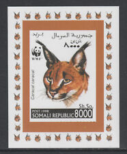Somalia 5735 - 1998 WWF - CARACAL LYNX #4  imperf deluxe sheet unmounted mint