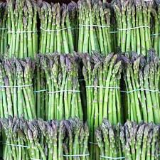 120 Mary Washington Asparagus Seeds Everwilde Farms Mylar Seed Packet