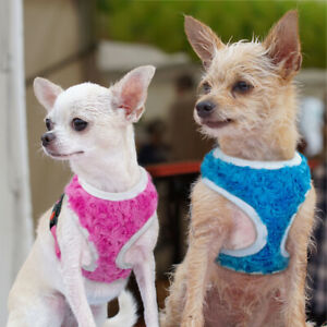 Breathable Small Dog Harness Pet Puppy Walking Vest with Flower Decoration Rose