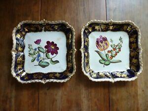 2 Antique Hand Painted Porcelain Cobalt and Gold Botanical Cabinet Serving Bowls