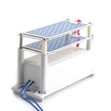 Ozone Generator 110V 10g/H Shock Treatment Air Ozonizer Double Ceramic Plate em