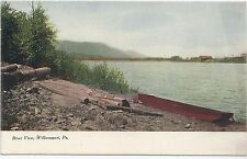 River View Williamsport  Pennsylvania  PA  Vintage Postcard