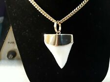 GREAT WHITE SHARK NATURAL TEETH 14KT SOLID GOLD PENDANT 2 inches long.