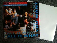 New Kids on the Block: Call it what you want 7'' POSTER