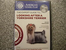 American Kennel Club Expert Guide to looking after a yorkshire terrier
