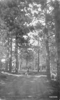 1920s Entrance Thousand Pines San Bernardino California postcard 7638