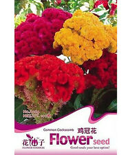 Cockscomb Seed Celosia Cristat Ornamental Flower ~1 Pack 100 Seeds ♫