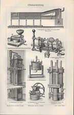 Lithografie 1907: OBSTVERWERTUNG. ZWERGOBSTBÄUME. Obst Marmelade Kochen