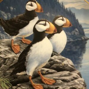 Collector Plate by Darrell Bush Birds of the North Rocky Perch Horned Puffins