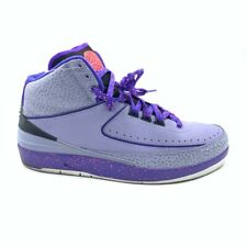 Nike Air Jordan 2 Retro Mens Basketball Shoes Iron Purple Mid 385475-553 10.5