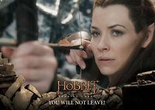 2016 Hobbit Battle of Five Armies 90 Card Base Set + 9 Weapons Chase Set + Box