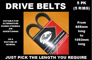 GATES 5PK, 5 RIB DRIVE BELTS, ALTERNATOR BELTS (Choose Length 580mm to 1303mm)