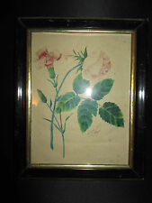 ancienne aquarelle œillet et rose signée A. Arthaud Pinaid? 1846 XIX ème