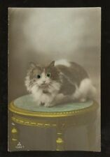 GB KG5 1927 PPC...POSTAGE DUE 1d + 1d...CATS EYES NOVELTY