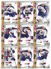 2012-13 Norfolk Admirals (AHL) Luca Caputi (Guelph Storm)