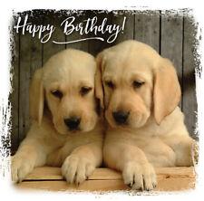 Quality Birthday Card Labrador Puppies Religious