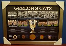 GEELONG AFL Historical Series Print SILVER Frame Premiership Brownlow Selwood