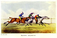 THOROUGHBRED RACE HORSES CROSS COUNTRY RACING, JOCKIES WHIPPING FULL SPEED PRINT