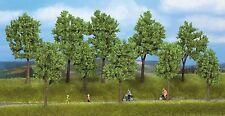 Noch 24215 Bäume Sommer 40-100 Mm
