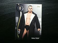 2019 Topps WWE NXT Roster Set #47 Walter 1st NXT Card