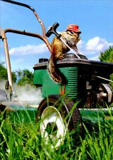 Avanti Chipmunk Lawnmower Cute Funny Fathers Day Card
