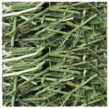 READI READY GRASS NATURAL DRIED RABBIT GUINEA PIG TREAT SNACK SWEET GRASS 500g